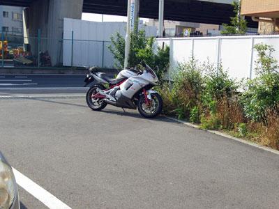 IMGP4021.jpg